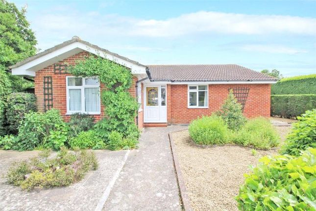 Thumbnail Detached bungalow for sale in James Close, Salvington, Worthing