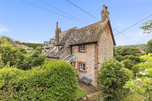 Thumbnail Cottage for sale in Bishopstone Village, Near Seaford, East Sussex