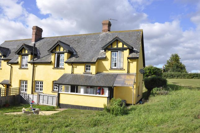 Thumbnail Cottage to rent in Sandy Lane Cottages, Broadclyst, Exeter
