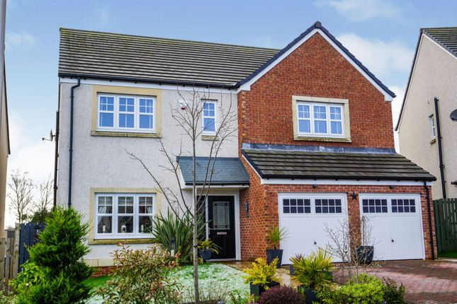 Thumbnail Detached house for sale in Shillingworth Place, Bridge Of Weir