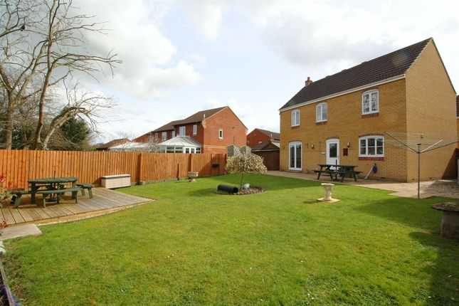 Thumbnail Detached house for sale in Avill Crescent, Taunton