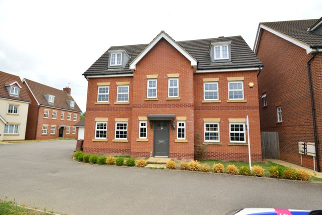 Thumbnail Detached house to rent in The Runway, Hatfield, Herts
