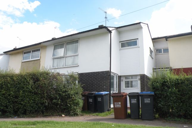 Thumbnail Semi-detached house to rent in Deerswood Avenue, Hatfield, Hertfordshire