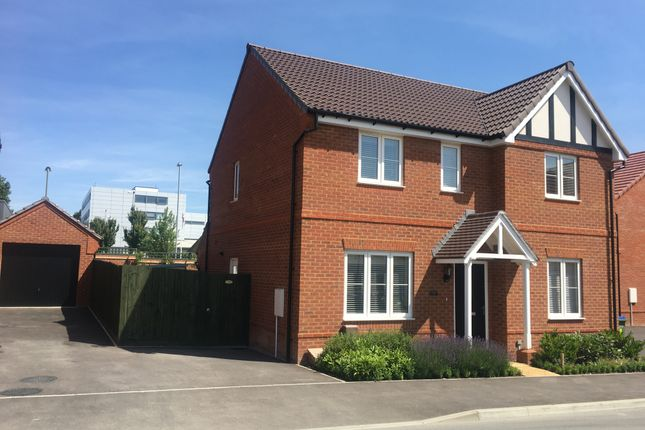 Thumbnail Detached house to rent in Normandy Road, Fareham