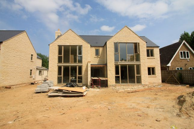 Thumbnail Detached house for sale in Millfield Road, Market Deeping, Peterborough