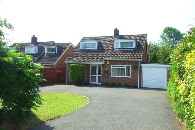 Thumbnail Detached bungalow for sale in Blenheim Drive, Allestree, Derby