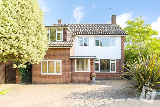 Thumbnail Detached house for sale in Tabors Avenue, Great Baddow, Chelmsford