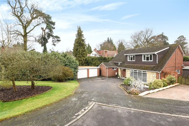 Thumbnail Detached house for sale in Redcrest Gardens, Camberley, Surrey