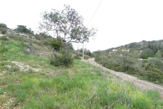 Land for sale in São Brás De Alportel, São Brás De Alportel, Portugal