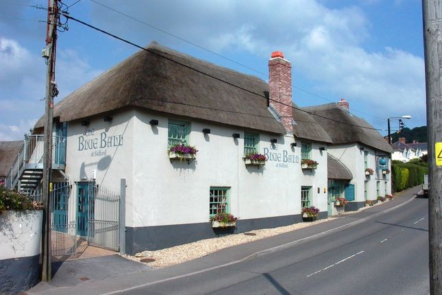 Thumbnail Pub/bar for sale in Sidford, Sidmouth