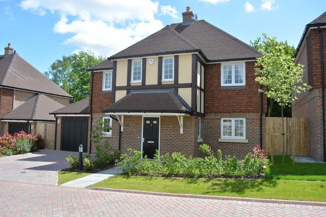 Thumbnail Detached house to rent in Honeysuckle Place, Off Ruden Way, Epsom