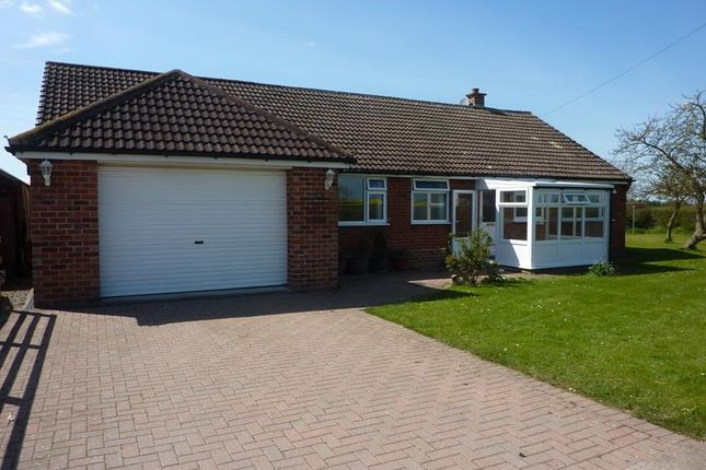4 bed detached bungalow to rent in West Moor Farm, West Harlsey, Northallerton DL6