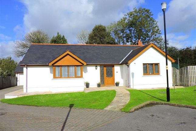 Thumbnail Detached bungalow for sale in Windsor Gardens, Narberth, Pembrokeshire