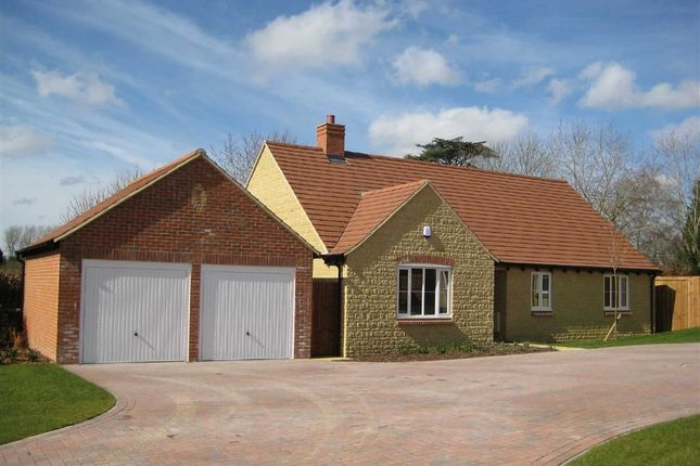 Thumbnail Detached bungalow to rent in Wellington Way, Southmoor, Oxon