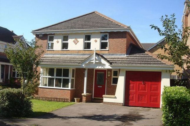 Thumbnail Detached house to rent in Badger Close, Four Marks, Alton