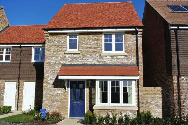 Thumbnail Terraced house to rent in Brambling Avenue, Finberry, Ashford