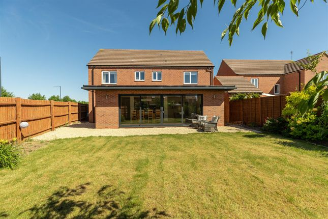 Thumbnail Detached house for sale in Little Field Close, Warwick