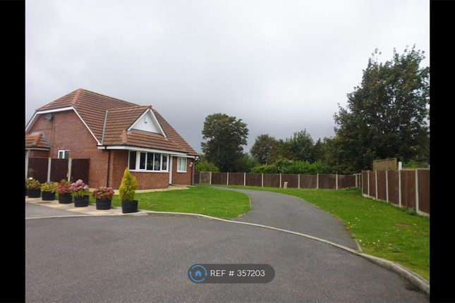 Thumbnail Bungalow to rent in Meols View Close, Scarisbrick, Southport