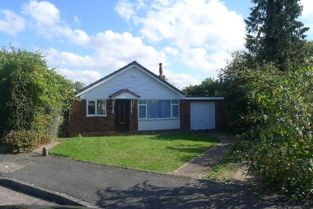 Thumbnail Detached bungalow to rent in Clive Close, Sutton Coldfield