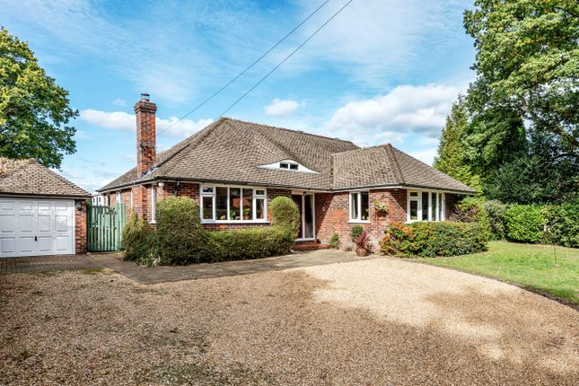 Thumbnail Detached bungalow for sale in Sutton Green Road, Sutton Green, Guildford