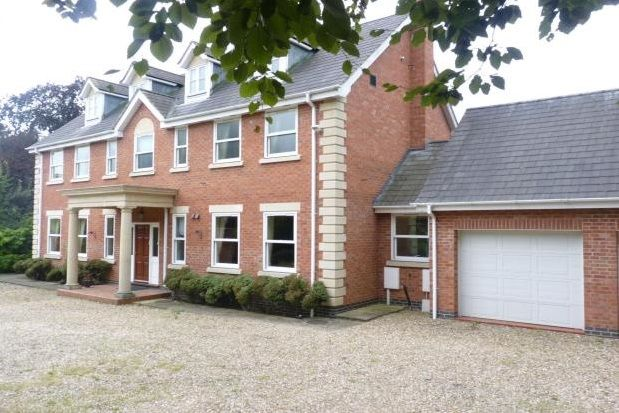 Thumbnail Detached house to rent in Elms Road, Leicester