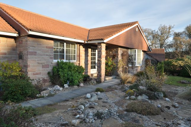 Thumbnail Detached bungalow for sale in 14 St Leonards Court, Forres, Moray