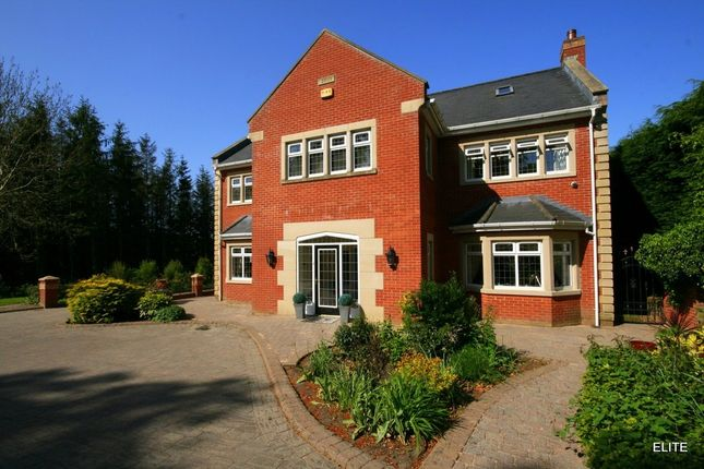 Thumbnail Detached house for sale in Waldridge, Chester Le Street