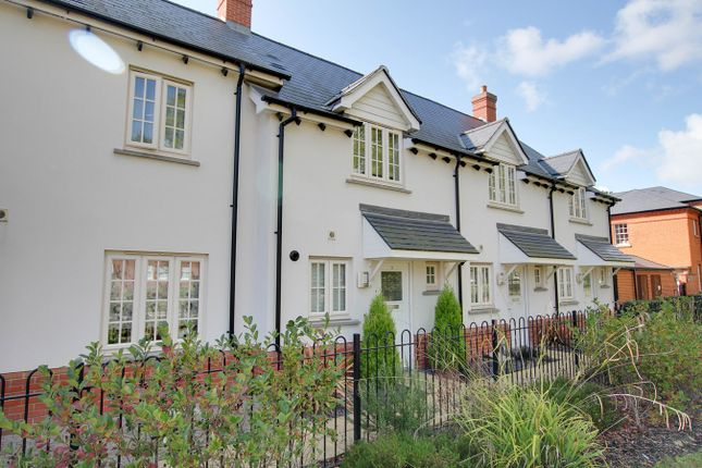 Thumbnail Terraced house for sale in Captain Gardens, Colchester
