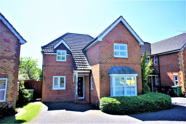 Thumbnail Detached house to rent in Angers Close, Camberley