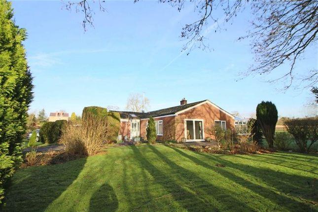 Thumbnail Bungalow for sale in Wirksworth Road, Cowers Lane, Belper, Derbyshire