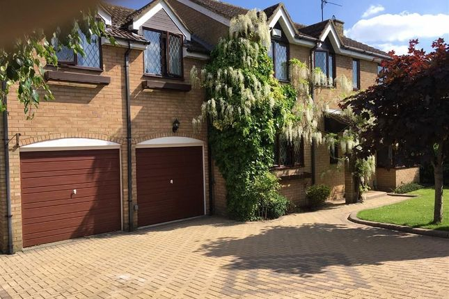 Thumbnail Detached house to rent in Loughborough Close, Swindon, Wiltshire