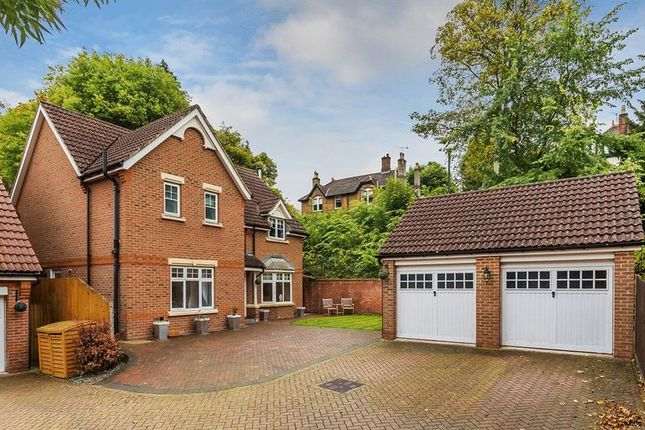 Thumbnail Detached house to rent in Eothen Close, Caterham