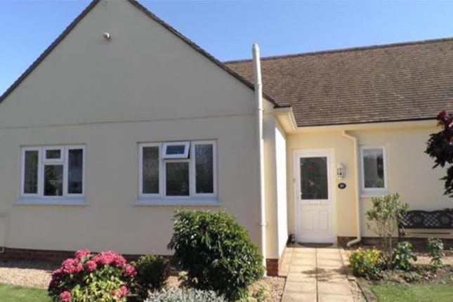 Thumbnail Detached bungalow for sale in Bexleigh Avenue, St Leonards-On-Sea, East Sussex