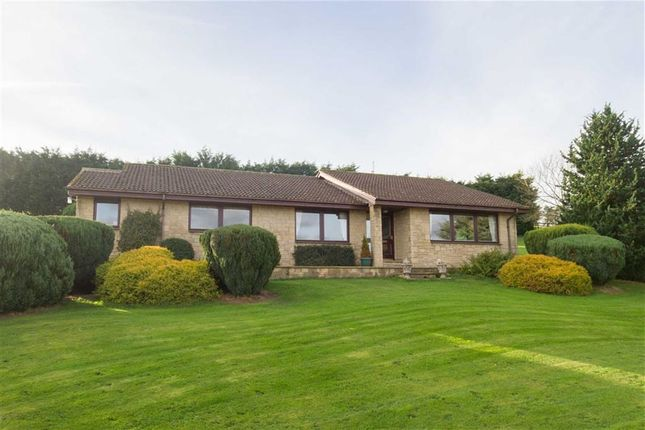 Thumbnail Detached bungalow for sale in Five Acres, Wooler, Northumberland