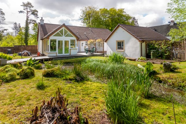 4 bed detached bungalow for sale in Glentrool Village, Newton Stewart