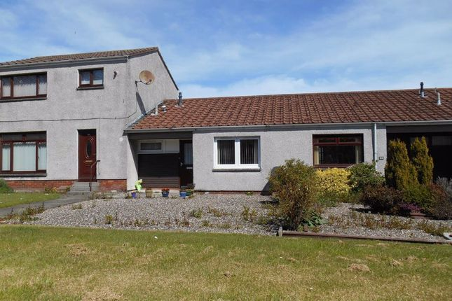 Thumbnail Detached house to rent in Tom Morris Drive, St. Andrews