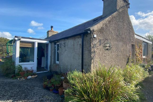 Thumbnail Detached bungalow for sale in Smiddy Cottage, Stenness, Orkney