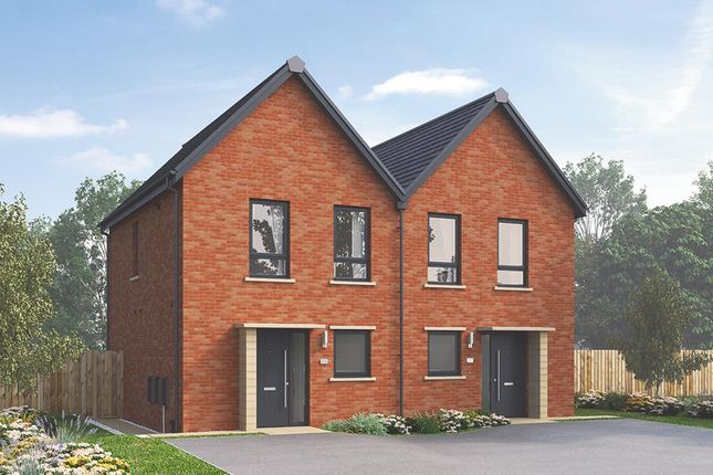 Thumbnail Semi Detached House For Sale In The Coleford At Stopes Road