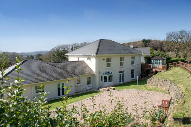 Thumbnail Property for sale in Panthowell Ddu Road, Neath