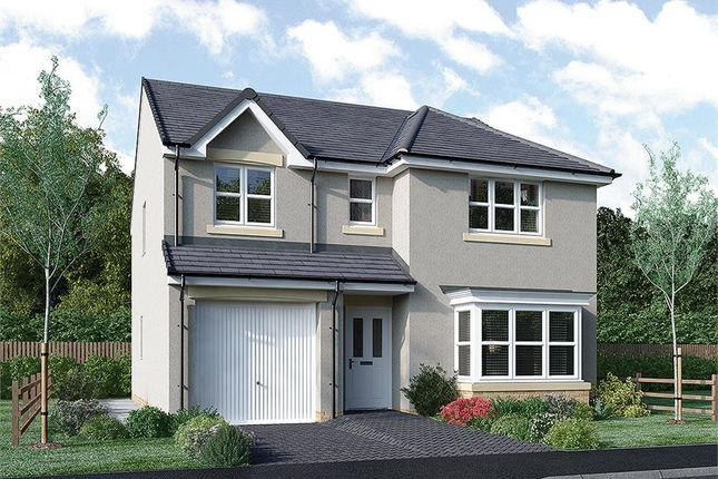 "Thumbnail Detached house for sale in ""Fletcher"" at Rosehall Way, Uddingston, Glasgow"