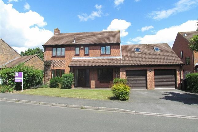 Thumbnail Detached house to rent in Eason Drive, Abingdon-On-Thames