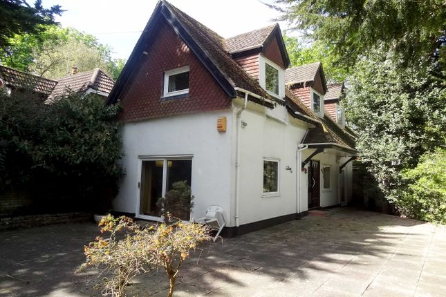 Thumbnail Detached house for sale in Knyveton Road, Bournemouth