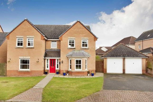Thumbnail Property for sale in Marjory Place, Bathgate