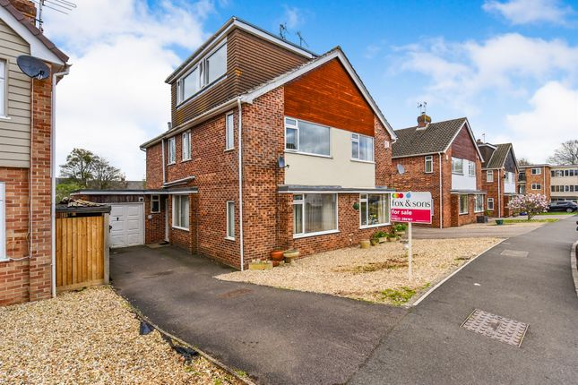 Thumbnail Semi-detached house for sale in Essex Drive, Taunton