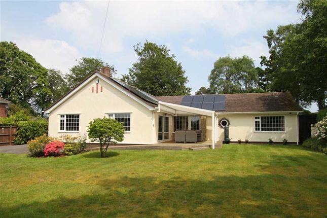 Thumbnail Detached bungalow for sale in Hinton Wood Avenue, Highcliffe, Christchurch, Dorset