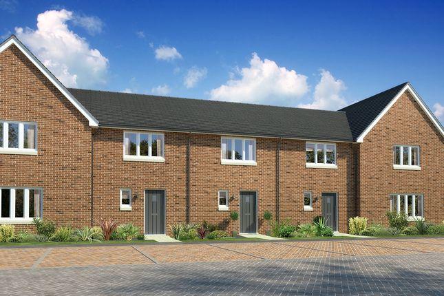 "Thumbnail Terraced house for sale in ""Aversley"" at Drum Farm Lane, Bo'ness"