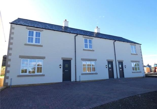 Thumbnail Terraced house for sale in The Forge, Gilsland, Brampton