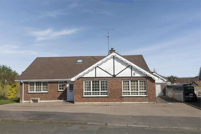 Thumbnail Detached bungalow for sale in Mount Court, Coleraine, County Londonderry