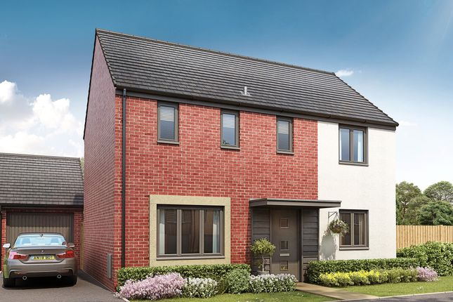 """Thumbnail Detached house for sale in """"The Clayton"""" at Pinhoe, Exeter"""