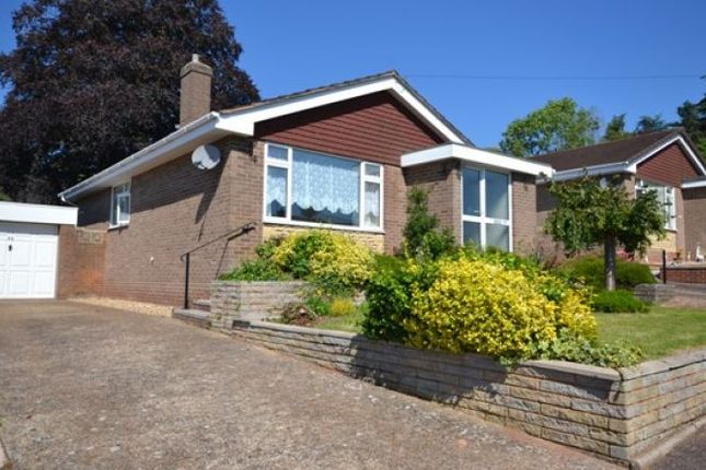 Thumbnail Bungalow to rent in Creedy Road, Crediton